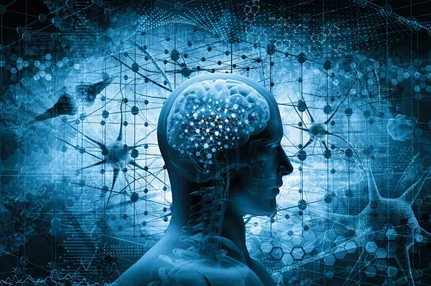 Что такое дофамин, и виноват ли он в наших зависимостях?