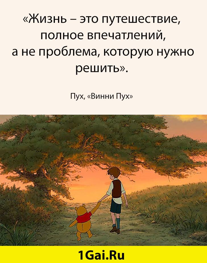 1581418700_14-14.jpg
