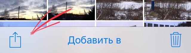 1586262058_img-1279.jpg