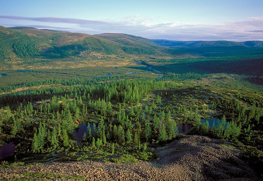 1588063742_baykal-lena_nature_reserve.jpg