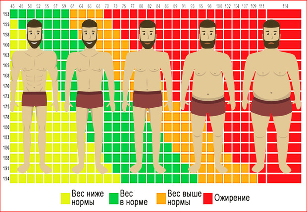 Показатели, которые могут рассказать о здоровье намного больше, чем индекс массы тела