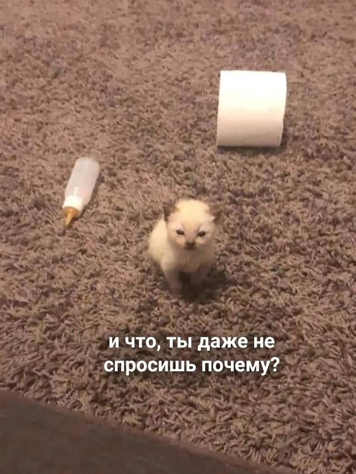 1594205921_12.jpg