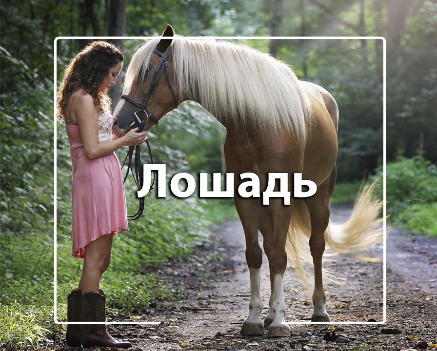 1594382906_09-09.jpg