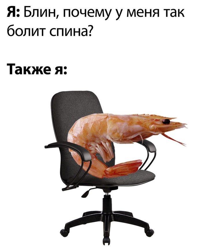 1595238444_18.jpg