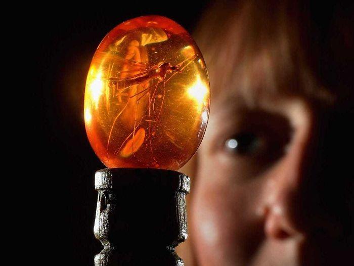 30 фактов офраншизе «Парк Юрского периода», раскрывающих картины вновом свете