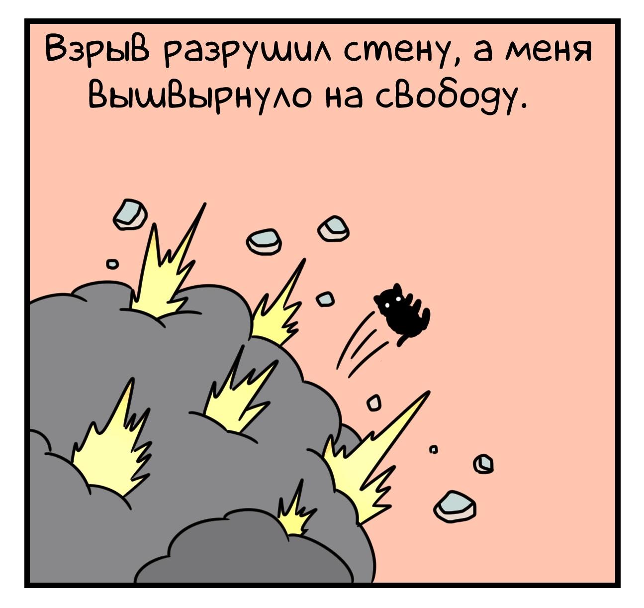 1598306517_7_6.jpg