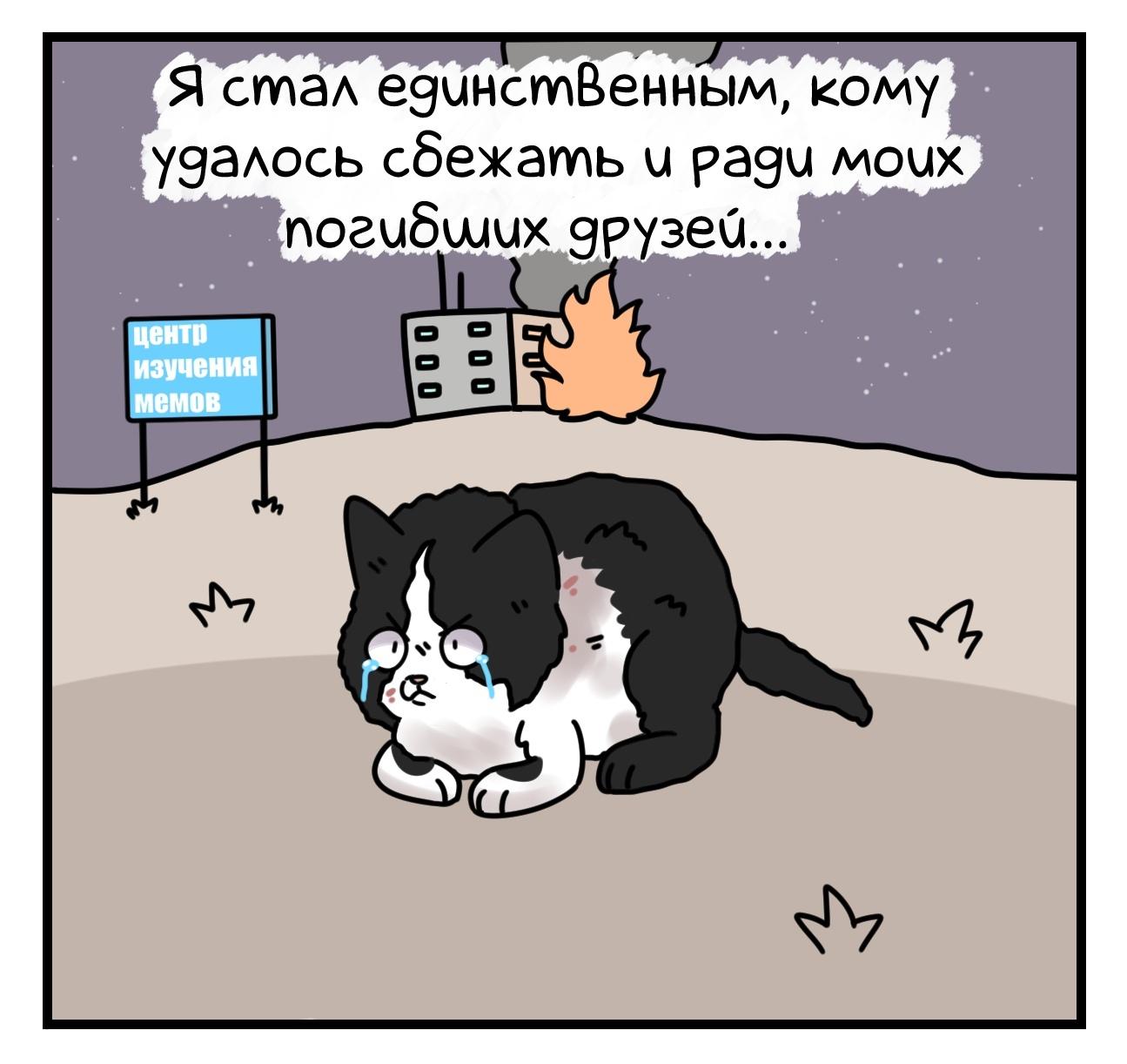 1598306581_7_7.jpg