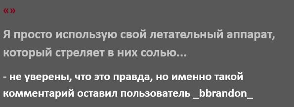 1598543020_3q.jpg