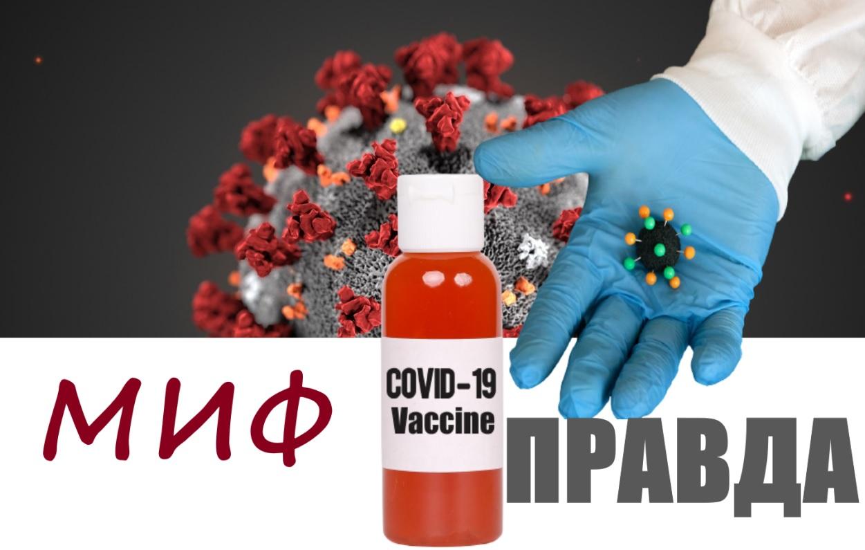 18 мифов о коронавирусе, которые похожи на правду, но это не так