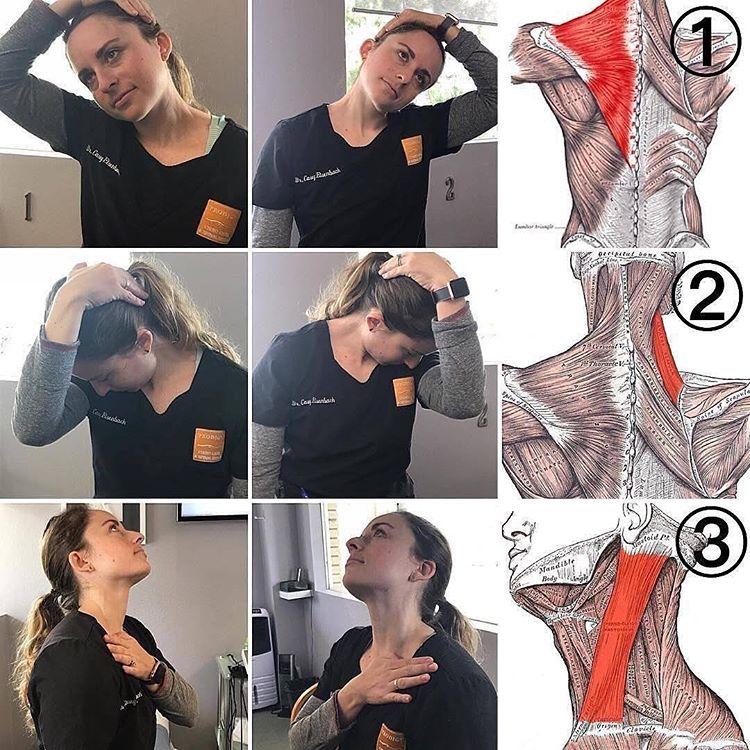 Как исправить осанку и избавиться от болей в шее, если на работе или в школе вы весь день сидите за компьютером?