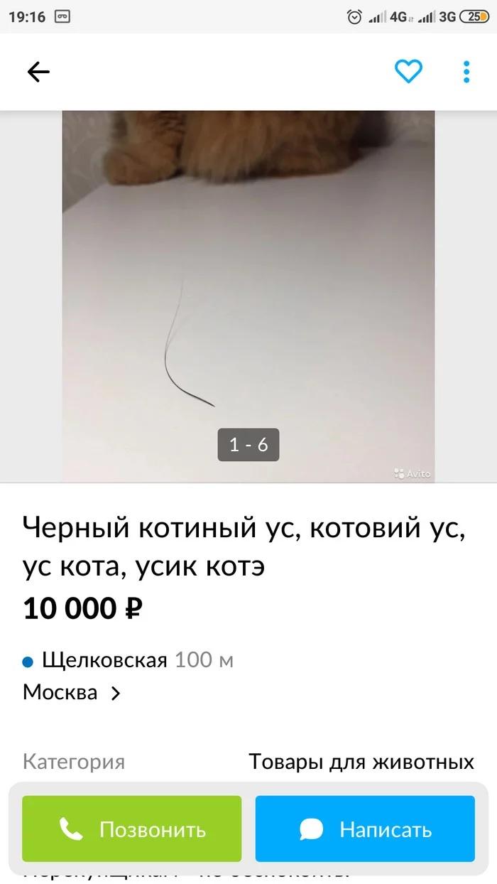 1603806822_1.jpg