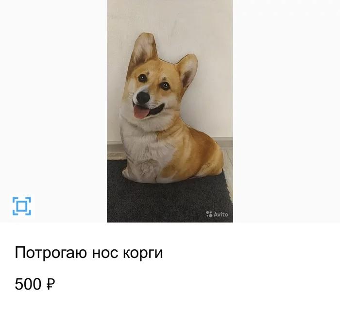 1603807819_13.jpg