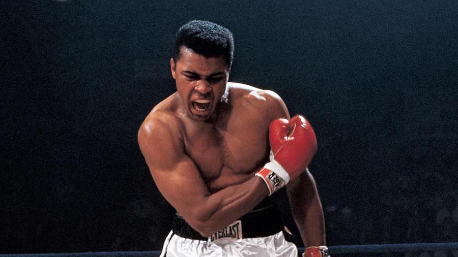 Советы для успеха: 7 цитат Мухаммеда Али, которые могут помочь добиться цели