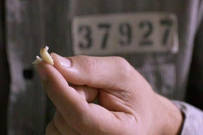 70 закулисных фактов о том, что происходило на съёмках культовых фильмов