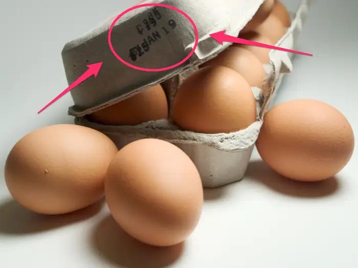 10 фактов о яйцах, которые вы, скорее всего, не знали