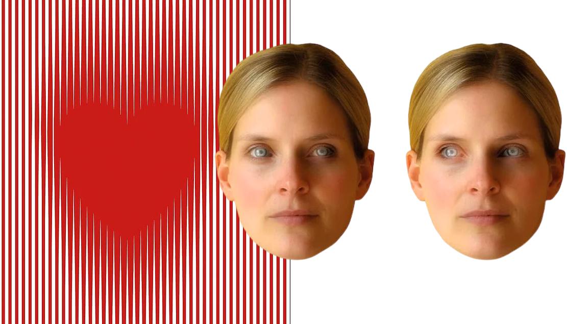 10 лучших оптических иллюзий, отмеченных международными наградами